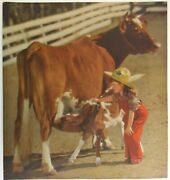 Rare Color Print, Young Cowgirl Helping Calf And Cow, Vintage Western Photo