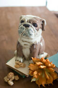 Ceramic Bull Dog Canister One Size Multicolor For All Dog Lovers