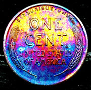 1919 D Lincoln Wheat Penny Cent- Beautiful Toning Superb Gem High Ms Grade 00