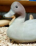 Contemporary Carved Working Pintail Drake Decoy