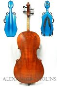 Advanced 4/4 Size Celloprofessional Set Up+ Hard Case+ Bow +rosin