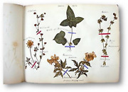 Womenand039s Botany Journal By Lady Mary Skipwith Filled With Original Botanical
