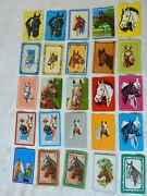 25 Vintage 1950s Trading Cards Of Horses' Heads 3 1/2 X 2 1/4 Blank Backs