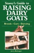 Storeys Guide To Raising Dairy Goat By Jerome D. Belanger Used