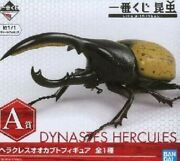 Insect Hercules Dynastes Beetle Prize A Figure Ichiban Kuji With Box