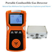Portable Combustible Gas Detector Natural Gas Waterproof With Triple Alarm Mode