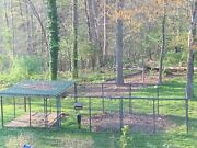 Tarter Farm And Ranch Elite Series Shingle Roof Covered Dog Kennel 10and039 X 30and039