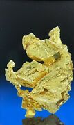 Round Mountain Nevadarare Crystal Gold Nugget0.99 Grams 13mmgenuine