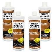 Robelle Super Mineral And Stain Erase Swimming Pool Metal And Stain Remover - 4 Qts.