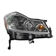 In2503131oe Passenger Side Hid Headlight Assembly