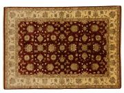 Afghan Chobi Ziegler Carpet Hand Knotted 210x300 Red Floral Pattern Wool