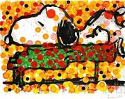Tom Everhart Play That Funky Music Snoopy Charlie Brown Peanuts Hand Signed