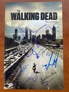 The Walking Dead Signed Autograph 13 Autos Andrew Lincoln 12x18 Photo Poster Psa
