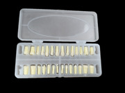 Dental Screw Caries Remove Decayed Teeth Practise Cuspid Model Tooth 1set=28pcs