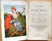 The Book Of Home Pets Showing How To Rear And Manage ... S O Beeton, 1st Ed 1862
