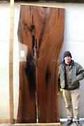 Black Walnut Live Edge Raw Wood Slab Rustic Dining Conference Tabletop 5478a8
