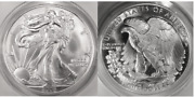 2006-dc Satin Obv And Proof Reverse Am Silver Eagle Dollar Daniel Carr Anacs Ms69