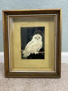 Vintage Paper Real Feathers White Owl Shadow Box Picture 11x14 Oddity