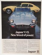 1973 Jaguar Xke Roadster + Coupe Ad - Must See