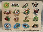Wooden Puzzle Lifestyles Of Butterfly, Frog And Melissa And Doug
