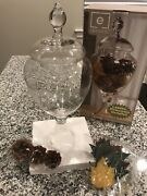New In Box Filled Apothecary 14 1/2 Decorative Glass Jar Leaves Pines Cones