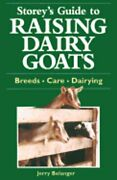 Storeys Guide To Raising Dairy Goat By Jerome D. Belanger New