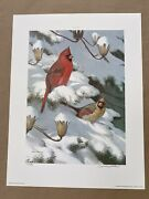 """Ned Smith """"winter Cardinals"""" Print 67/86 Gallery Proof 1985 Birds Nature Pa"""