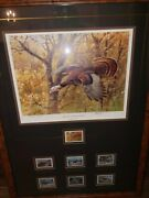 Ducks Unlimited And Wild Turkey Federation Collectables, Pictures, Stamps, Etc