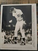 Mark Fidrych 1976 Mlb Baseball Photo Rare Pitcher Detroit Tigers Lions Red Wings