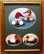 Canvasback Duck Decoy Giclee Photo Reproduction Collage Ducks Unlimited Edition