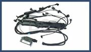 Genuine Mercedes Engine Wiring Harness Assembly Fuel Injection Oe 1404404605