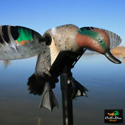 Mojo Elite Series Green Wing Teal Spinning Wing Motion Motorized Robo Duck Decoy