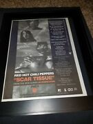 Red Hot Chili Peppers Scar Tissue Rare Original Radio Promo Poster Ad Framed 4