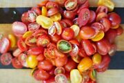 Red Grape And Small Red Cherry Mix Tomato Seeds -comb. S/h See Our Store