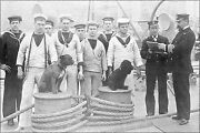 Poster Many Sizes Crewmen And Officers With Dogs On The Quarterdeck Of Britis