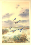 Roland Green / Watercolor Of Six Ducks Taking Off From Marsh With 7 Ducks 1940