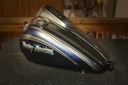 Paint On Your Parts Street Road Glide Electra Roadking Heritage Harley Davidson
