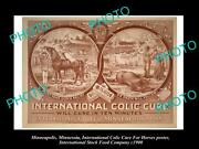 Old 8x6 Photo Of Minneapolis Food Co Poster Horse Medicine Colic Cure 1900 1