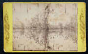Antique Histric View Of Silver Springs Florida Stereoview Real Photo Card