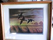 Set Of 4 Framed In Real Wood Foil Etchings Of Birds In Flight By David A. Maass