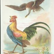 Trade Card J And P Coats Spool Cotton Sewing Vintage Cocks And Eagle Fighting