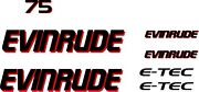 7 Multi-color Evinrude Outboard Boat Motor Decals/stickers. Customizable