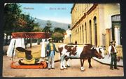 Madeira Carro De Bois Postcard Used 1926 / Bull-cattle Great Britain Paquebot