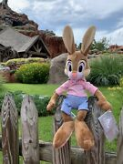 New With Tag Disney Splash Mountain Brer Rabbit Plush Doll Rare In Hand Sold Out