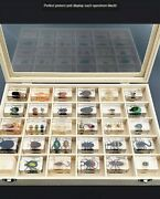 Beetle Specimen Transparent Block With 30 Real Insect Embedded Teaching Tool