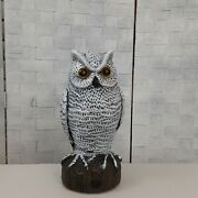 Snowy Owl Decoy With Sound Not Tested Gardners Owl Collectors