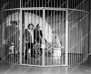 Crp-14300 1945 Ole Olsen, Chic Johnson In Lion Cage W Poodle Dog Film See My Law