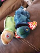 Rare 1997 Rainbow And Iggy Ty Beanie Babies With Tags Sold Together