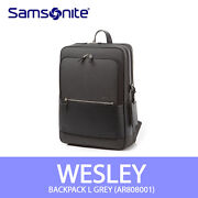 Samsonite Wesley Backpack L 15.6 Laptop Ipad 13x18x5in Business Free Ems /gray