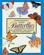 Butterflies How To Identify And Attract Them To Your Garden